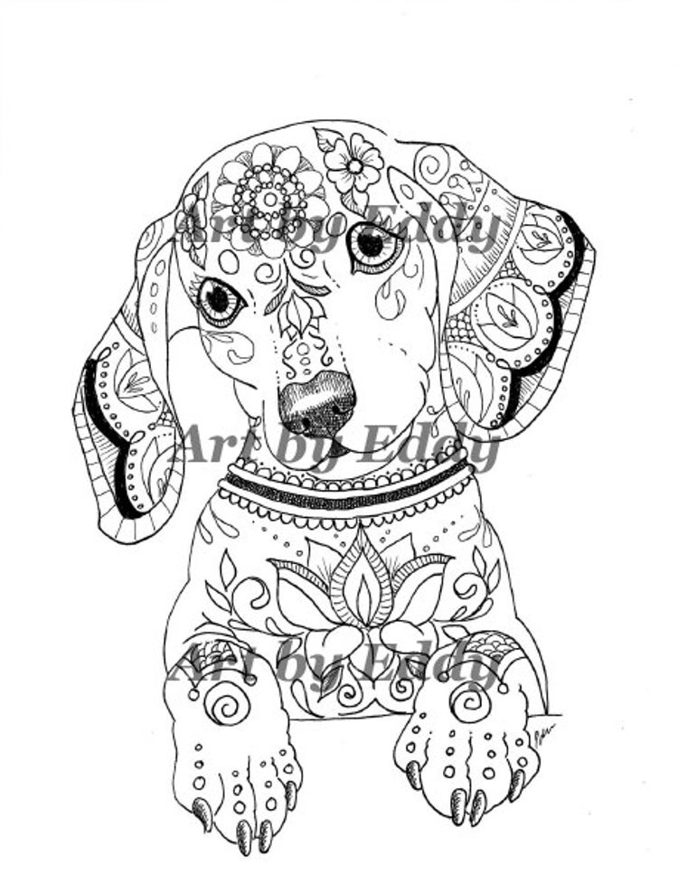 coloring art set art of dachshund coloring book volume no 1 by artbyeddy set coloring art