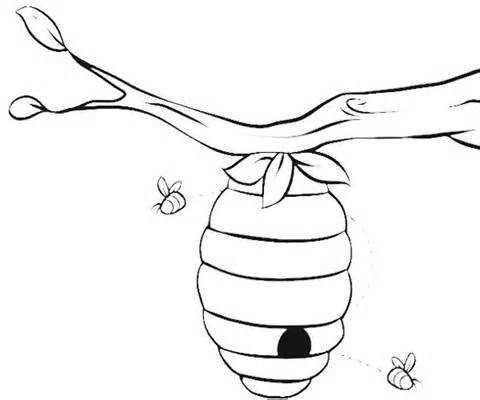 coloring bee hive beehive coloring pages getcoloringpagescom bee hive coloring