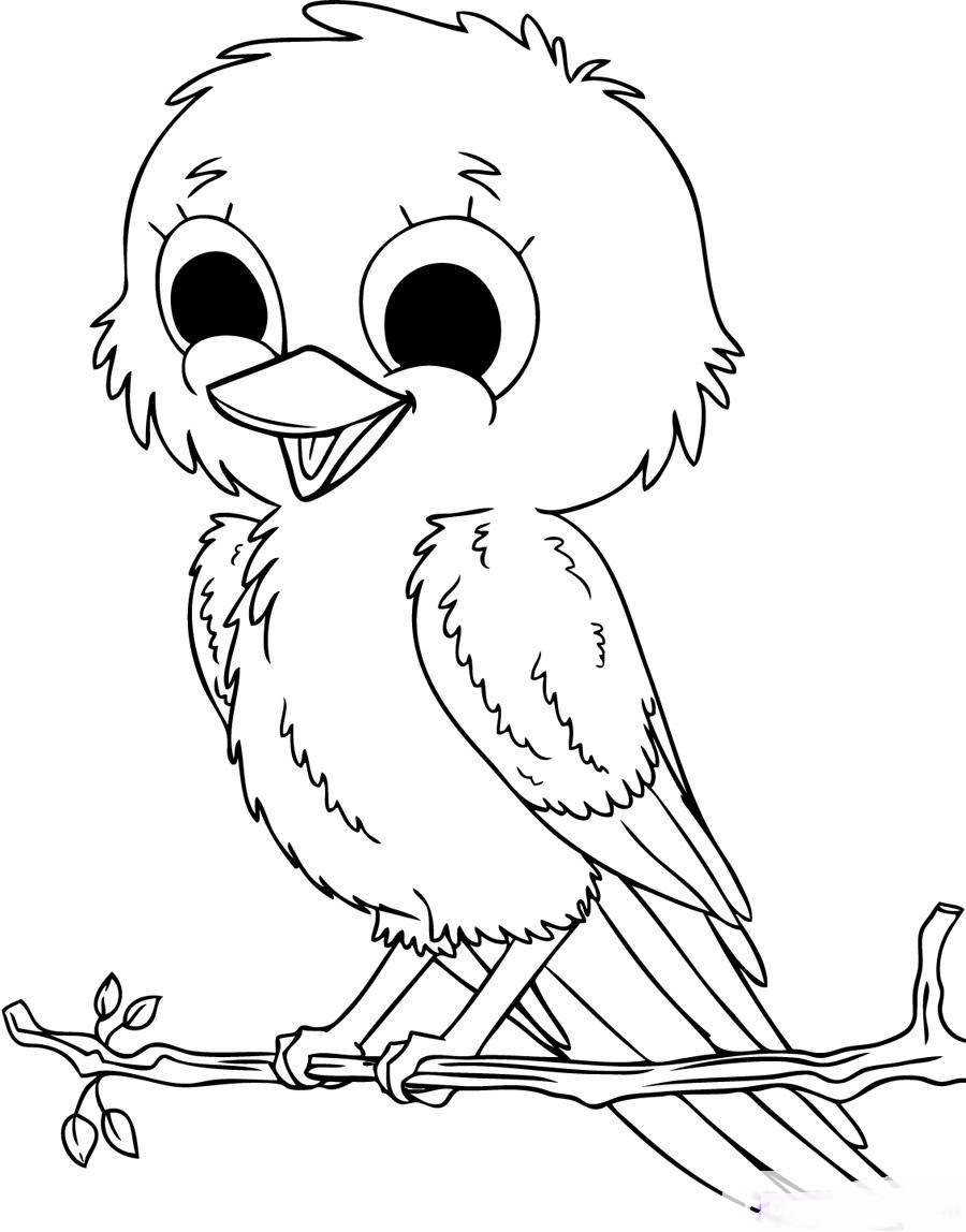 coloring birds for kids cute baby birds coloring pages to printables for coloring birds kids