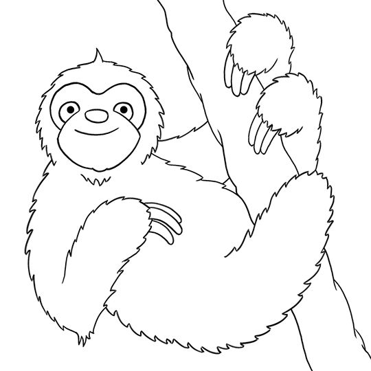 coloring cute sloth drawing cute little sloth coloring page color luna sloth cute drawing coloring
