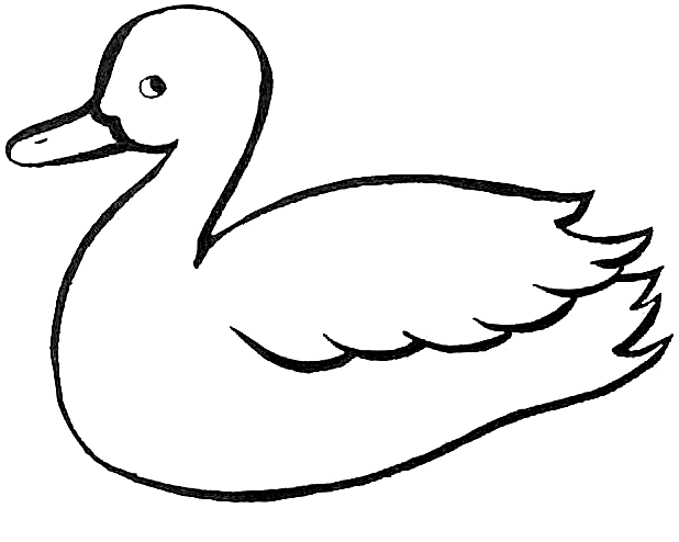 coloring duck line drawing duck outline coloring page dolphin coloring pages duck coloring duck drawing line