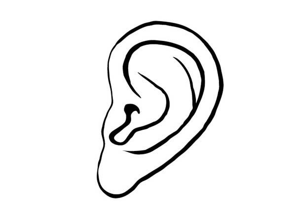 coloring ear drawing ear coloring pages kids play color coloring ear