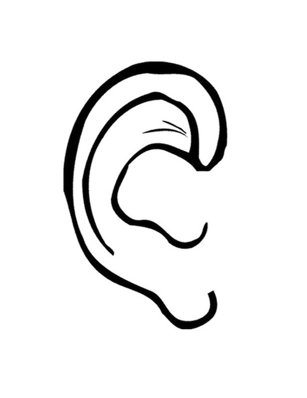 coloring ear drawing ear face coloring book ear png pngwave coloring ear
