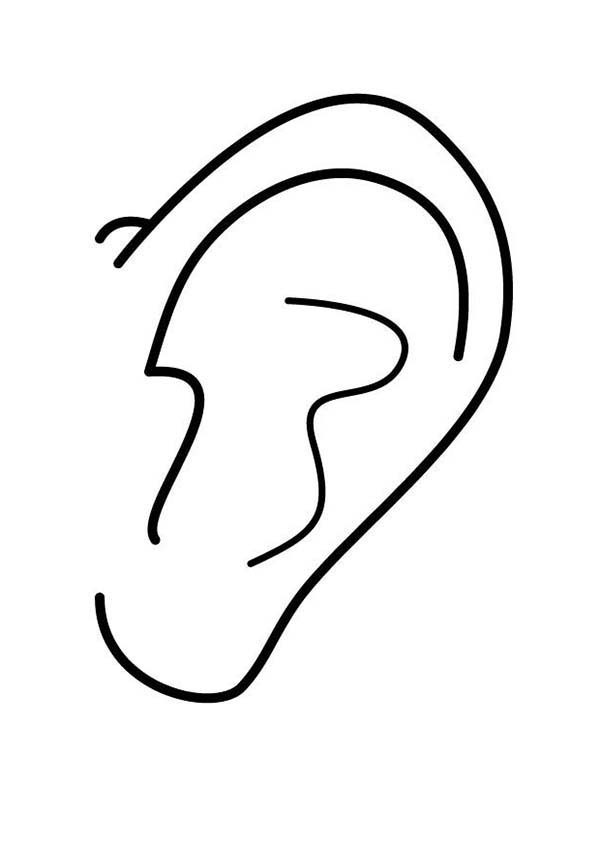 coloring ear ear coloring pages for kids kids play color coloring ear