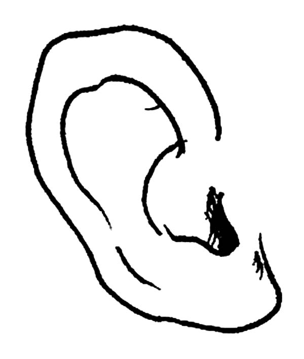 coloring ear ear coloring pages kids play color ear coloring