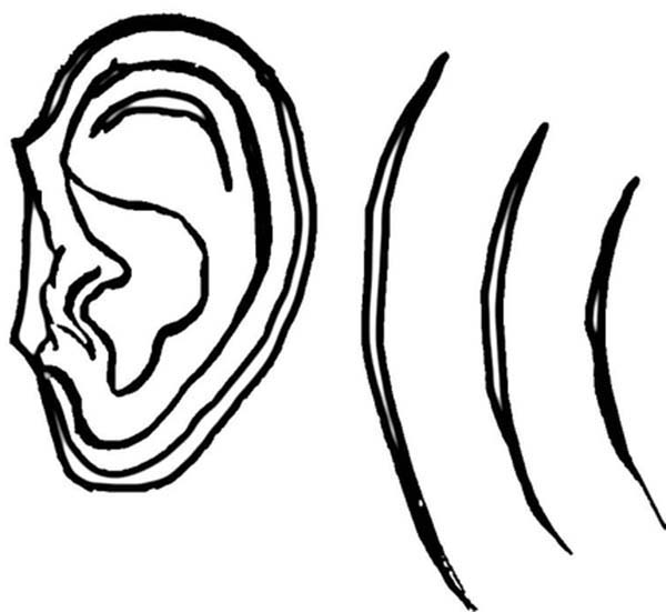 coloring ear ear coloring pages to download and print for free ear coloring