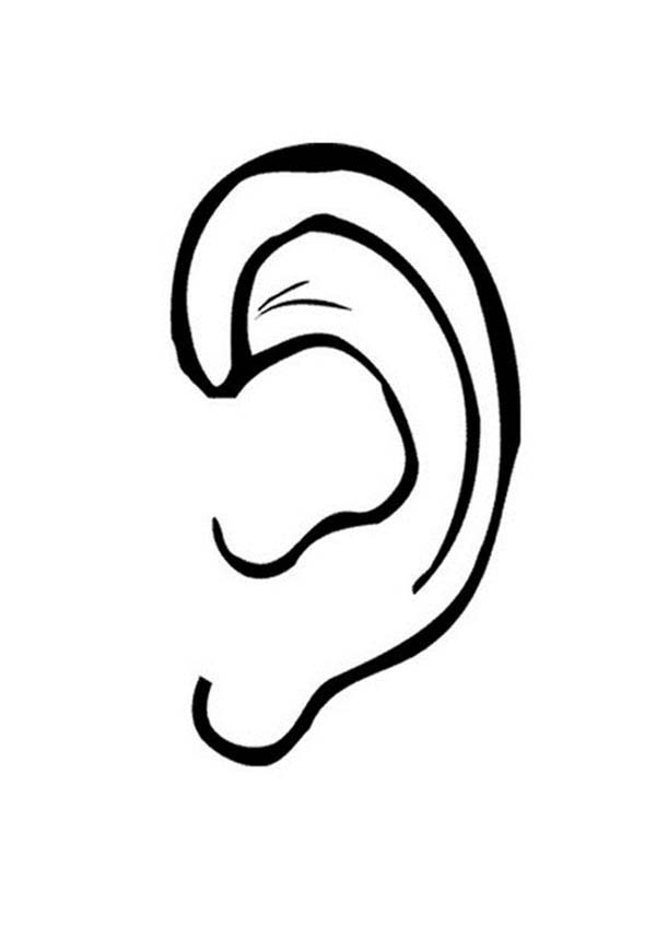 coloring ear ears coloring pages coloring home coloring ear 1 1