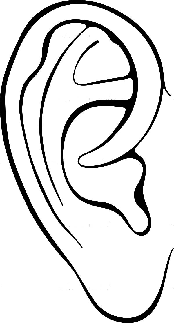 Coloring ear