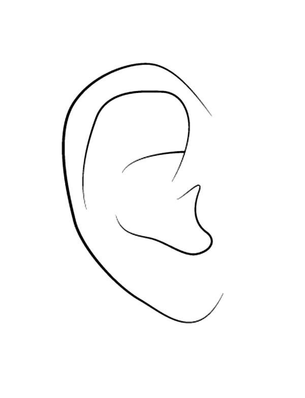 coloring ear free online coloring page to download print part 18 ear coloring