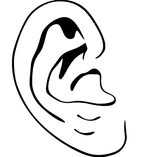 coloring ear listening ear images clipart panda free clipart images ear coloring
