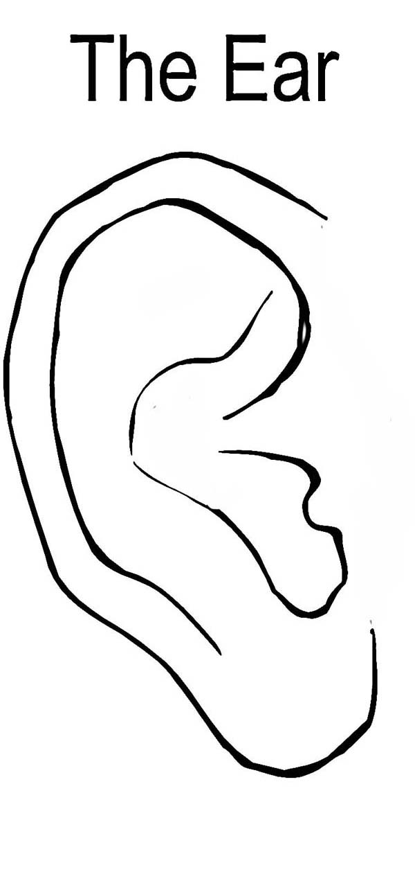 coloring ear right ear coloring pages kids play color ear coloring