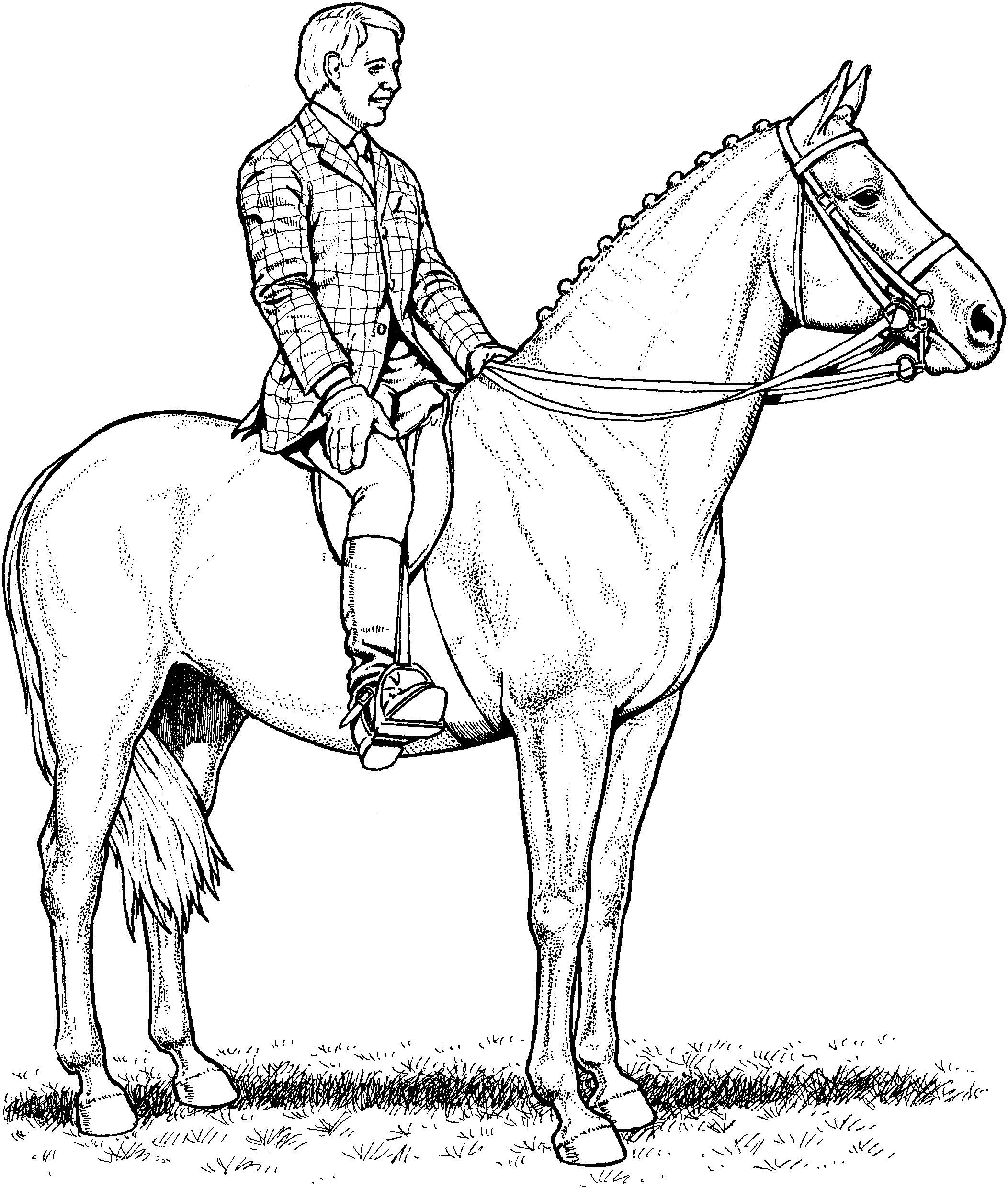coloring page horse 30 best horse coloring pages ideas weneedfun horse page coloring