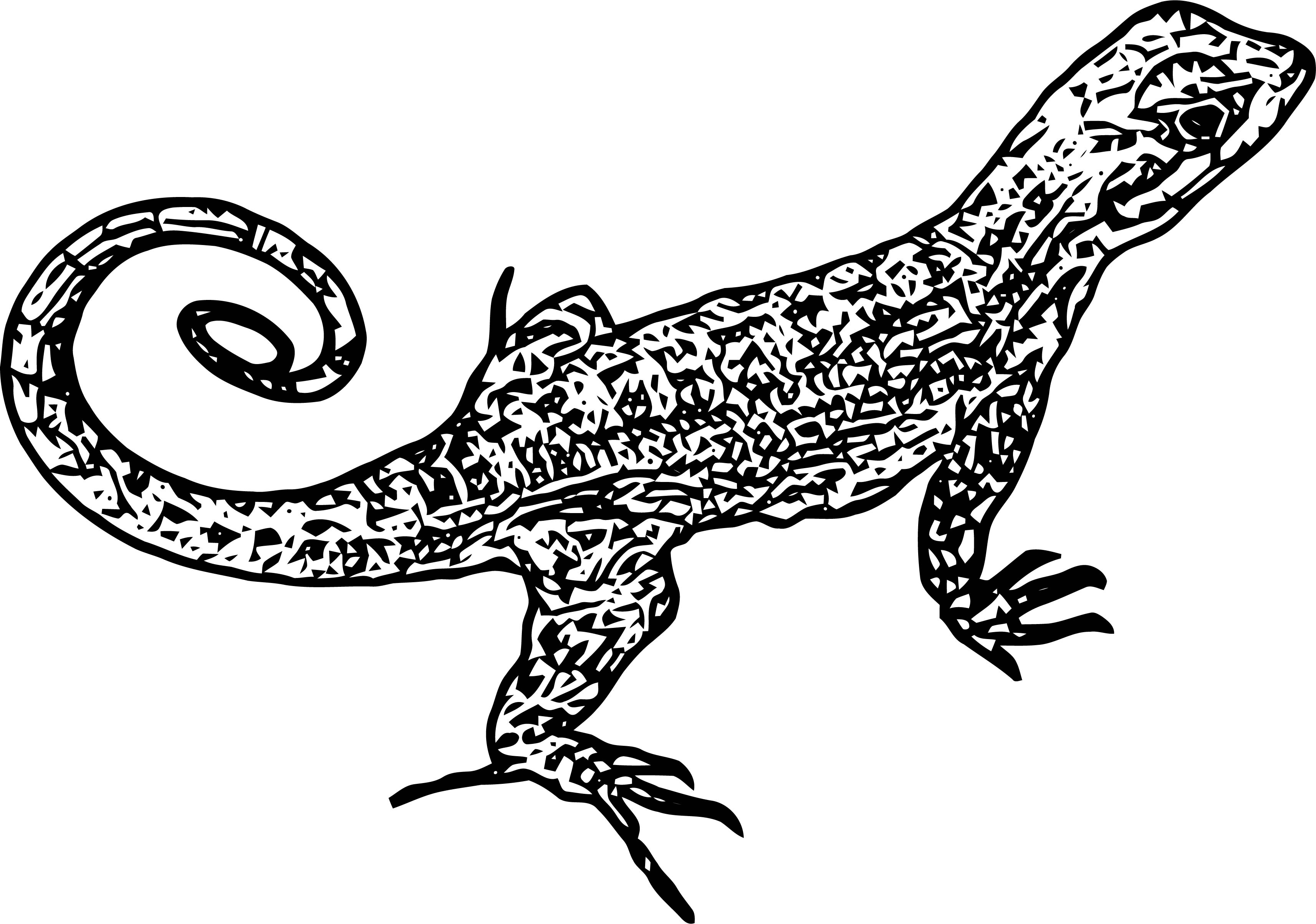 coloring page lizard free lizard coloring pages page coloring lizard