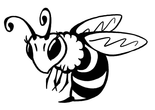 coloring page of bee free printable bumble bee coloring pages for kids bee page coloring of