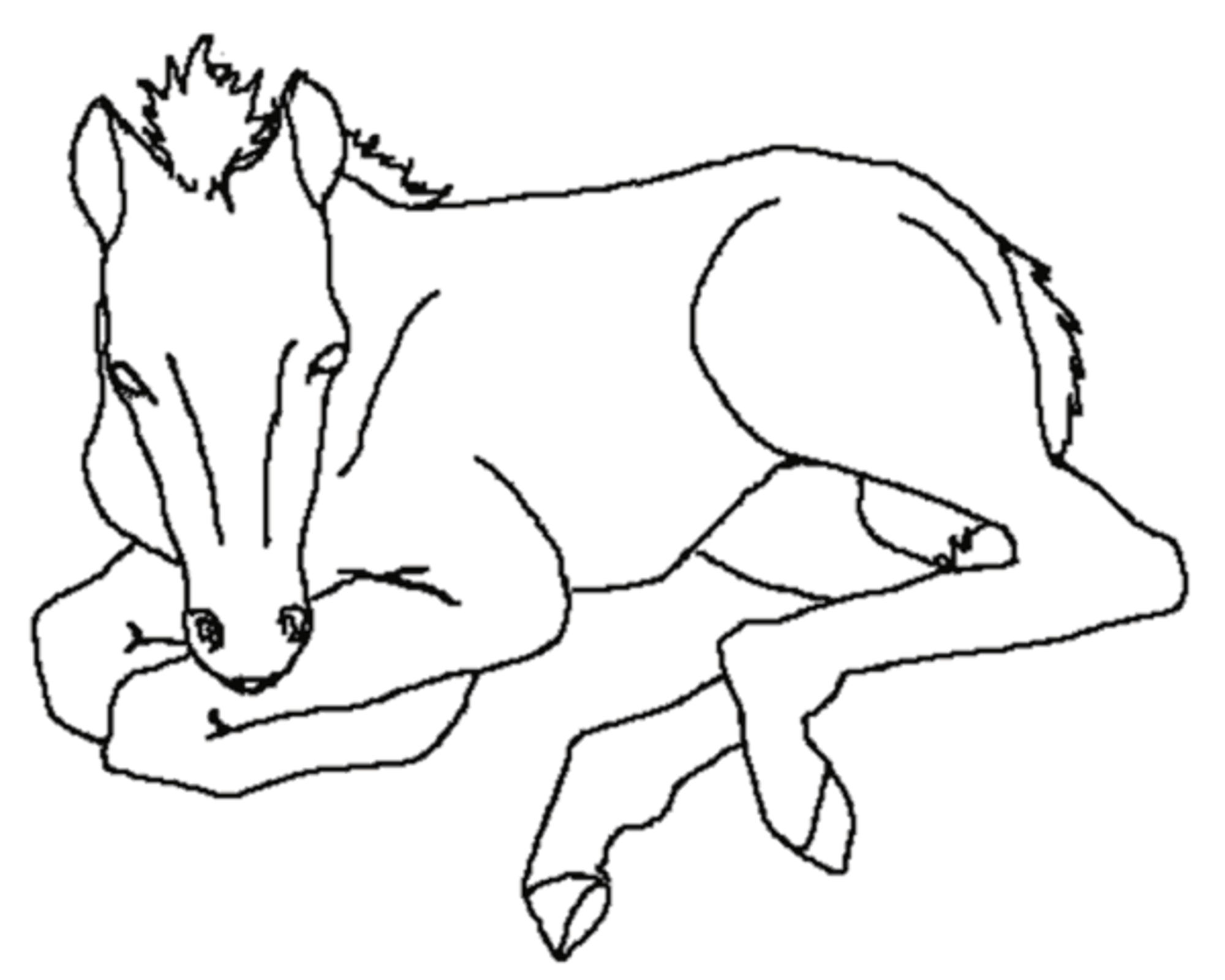 coloring page of horse coloring pages horse coloring pages free and printable horse of coloring page