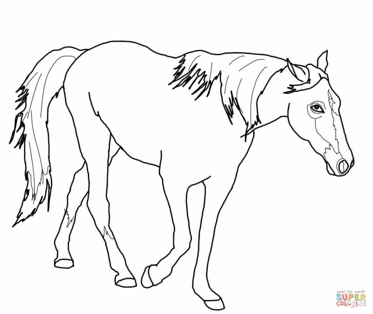 coloring page of horse free horse coloring pages page of horse coloring