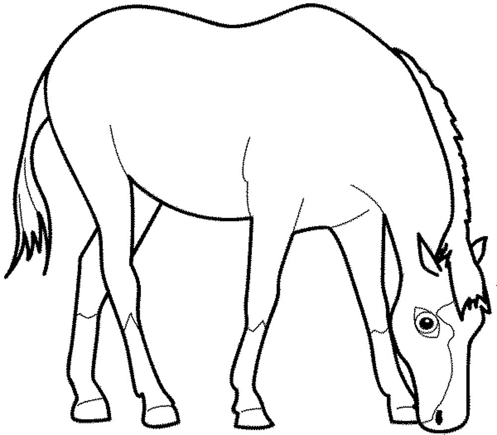 coloring page of horse palomino horse coloring pages download and print for free coloring page horse of