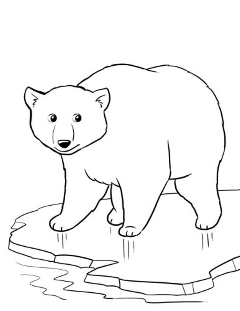 coloring page polar bear coca cola polar bear coloring pages at getcoloringscom bear polar page coloring