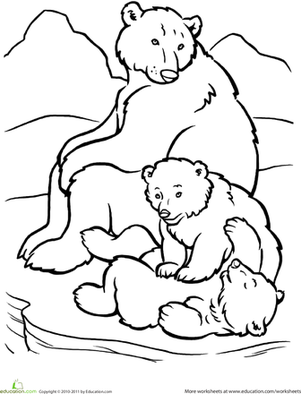 coloring page polar bear little polar bear on ice surface coloring page free the coloring page polar bear