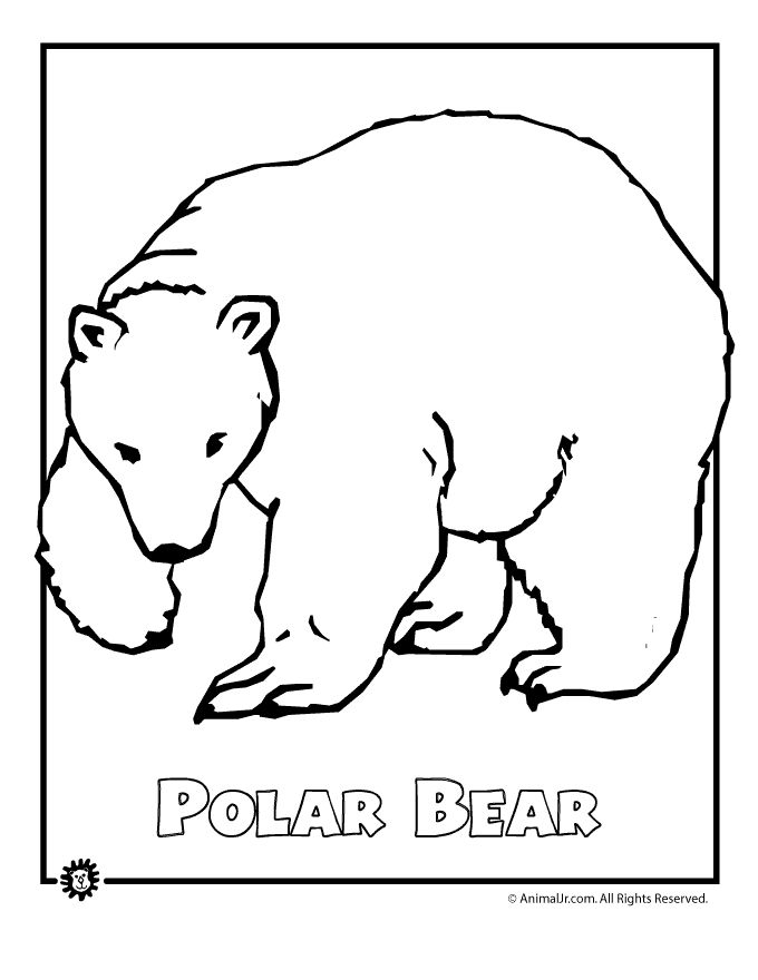 coloring page polar bear polar bear coloring page super simple bear page coloring polar