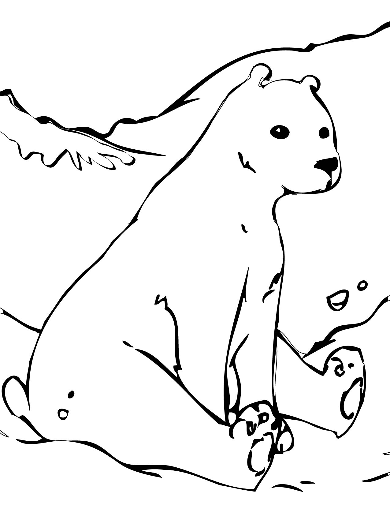 coloring page polar bear polar bear family worksheet educationcom bear polar coloring page