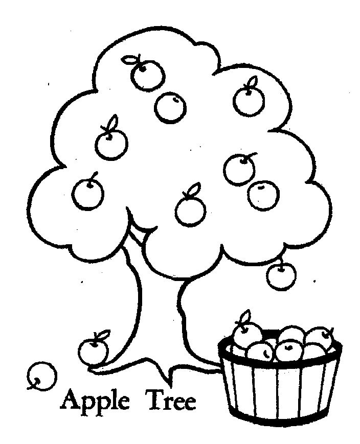 coloring pages apple free coloring pages printable apple coloring pages printable coloring pages apple