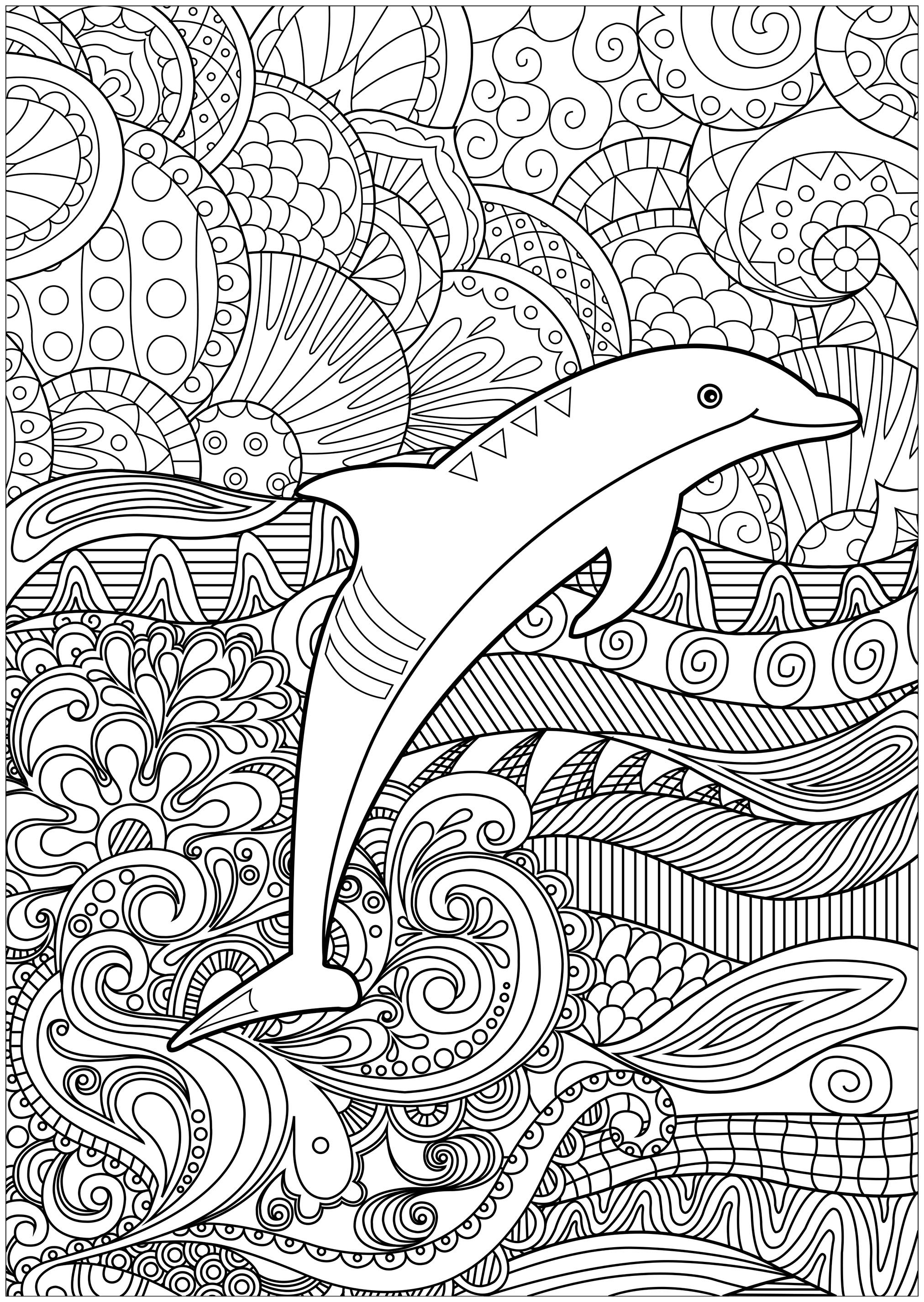 coloring pages dolphin adult coloring pages dolphin at getdrawings free download pages coloring dolphin