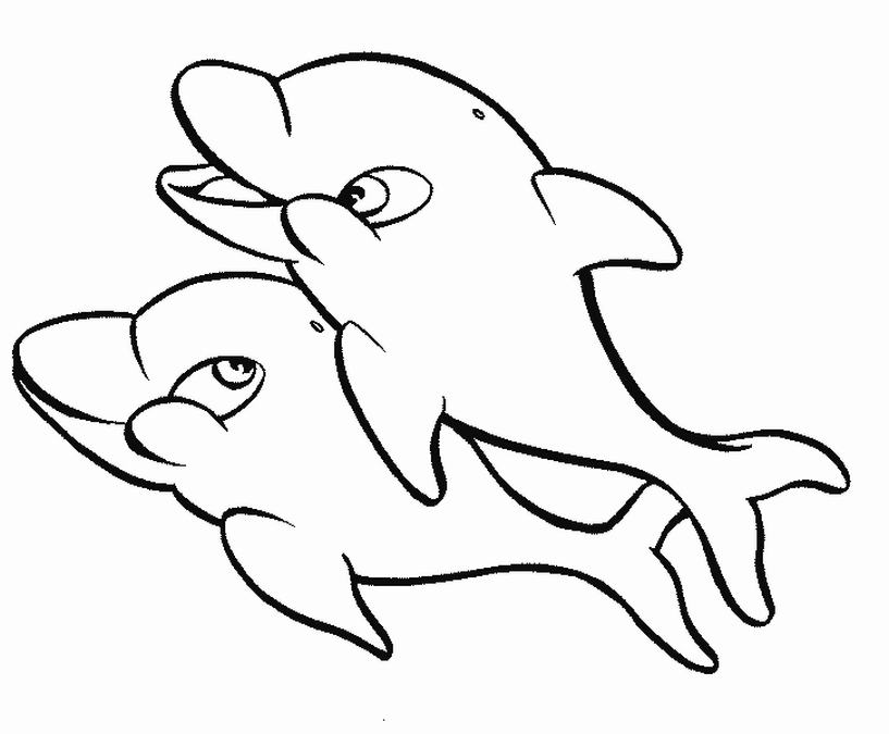 coloring pages dolphin coloring pages dolphin dolphin coloring pages
