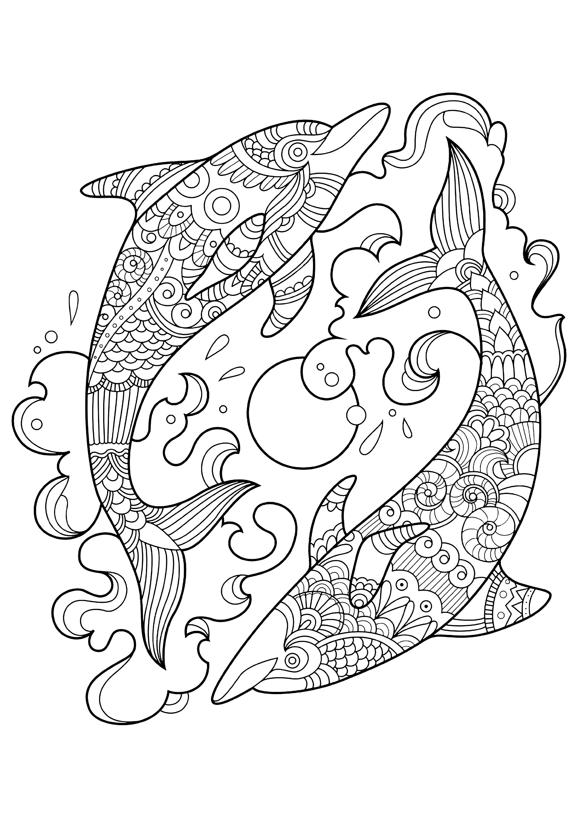 coloring pages dolphin dolphin coloring pages download and print dolphin coloring pages dolphin