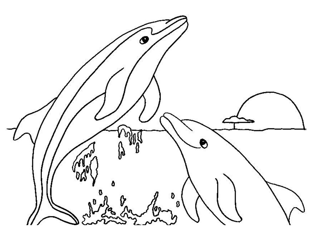 coloring pages dolphin free coloring pages of dolphins to the print pages coloring dolphin
