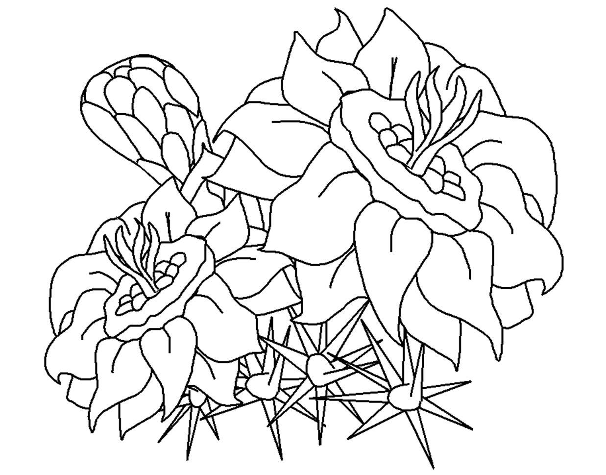 coloring pages flowers printable free printable flower coloring pages for kids flowers coloring pages printable