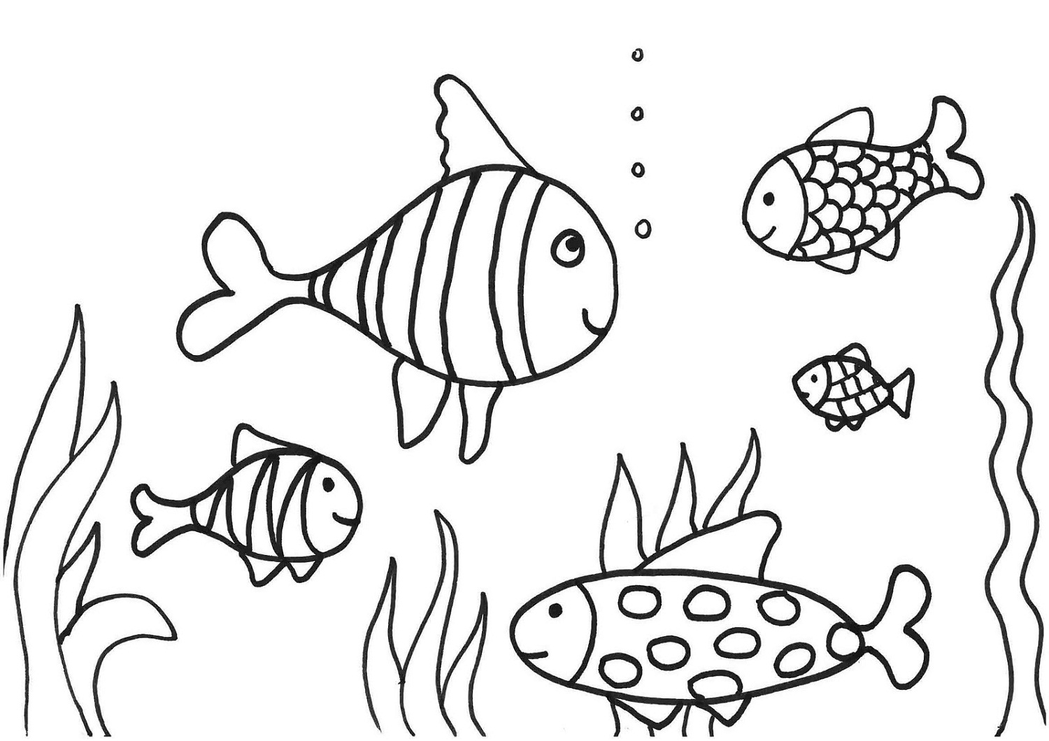 coloring pages for fish free printable fish coloring pages for kids pages for fish coloring