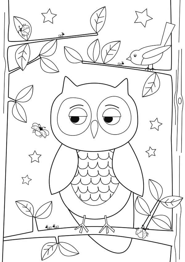 coloring pages for kids online owl flat image coloring for kids coloring page download kids for online pages coloring