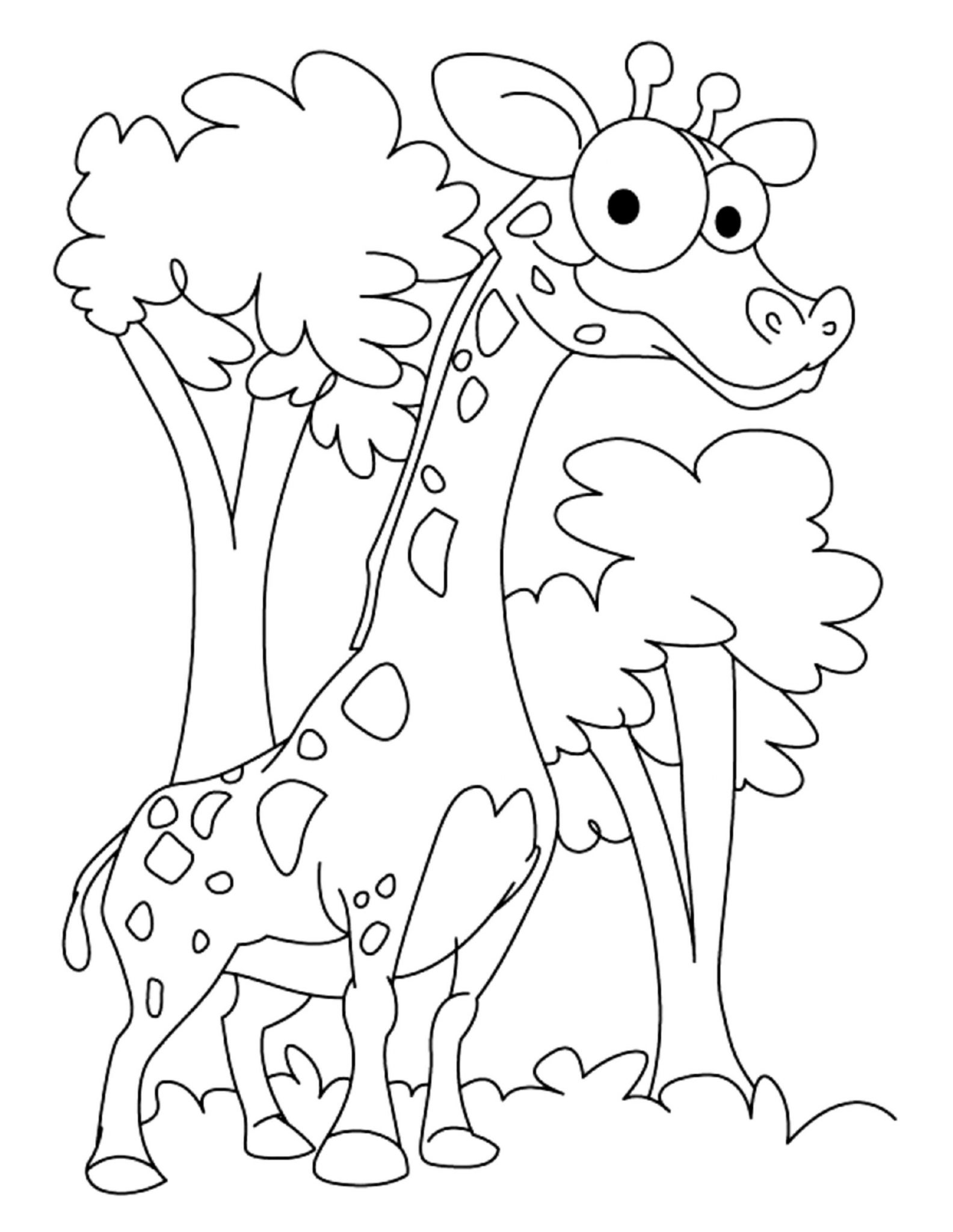 coloring pages giraffe coloring pages for kids giraffe coloring pages for kids pages coloring giraffe