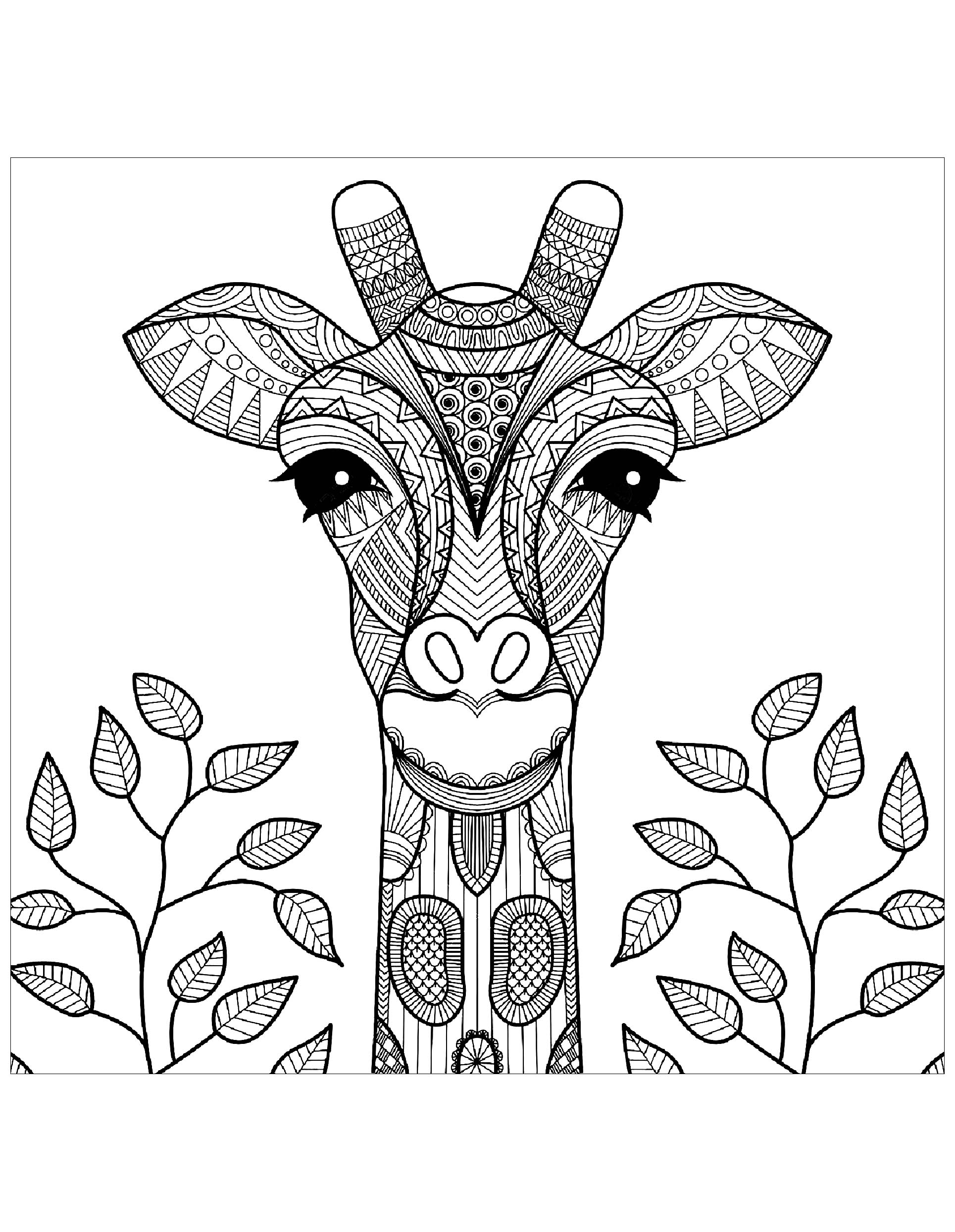 coloring pages giraffe giraffes for kids giraffes kids coloring pages pages giraffe coloring
