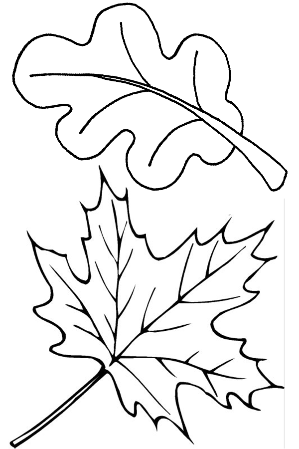 coloring pages leaves fall autumn coloring pages fall leaves leaves pages fall coloring
