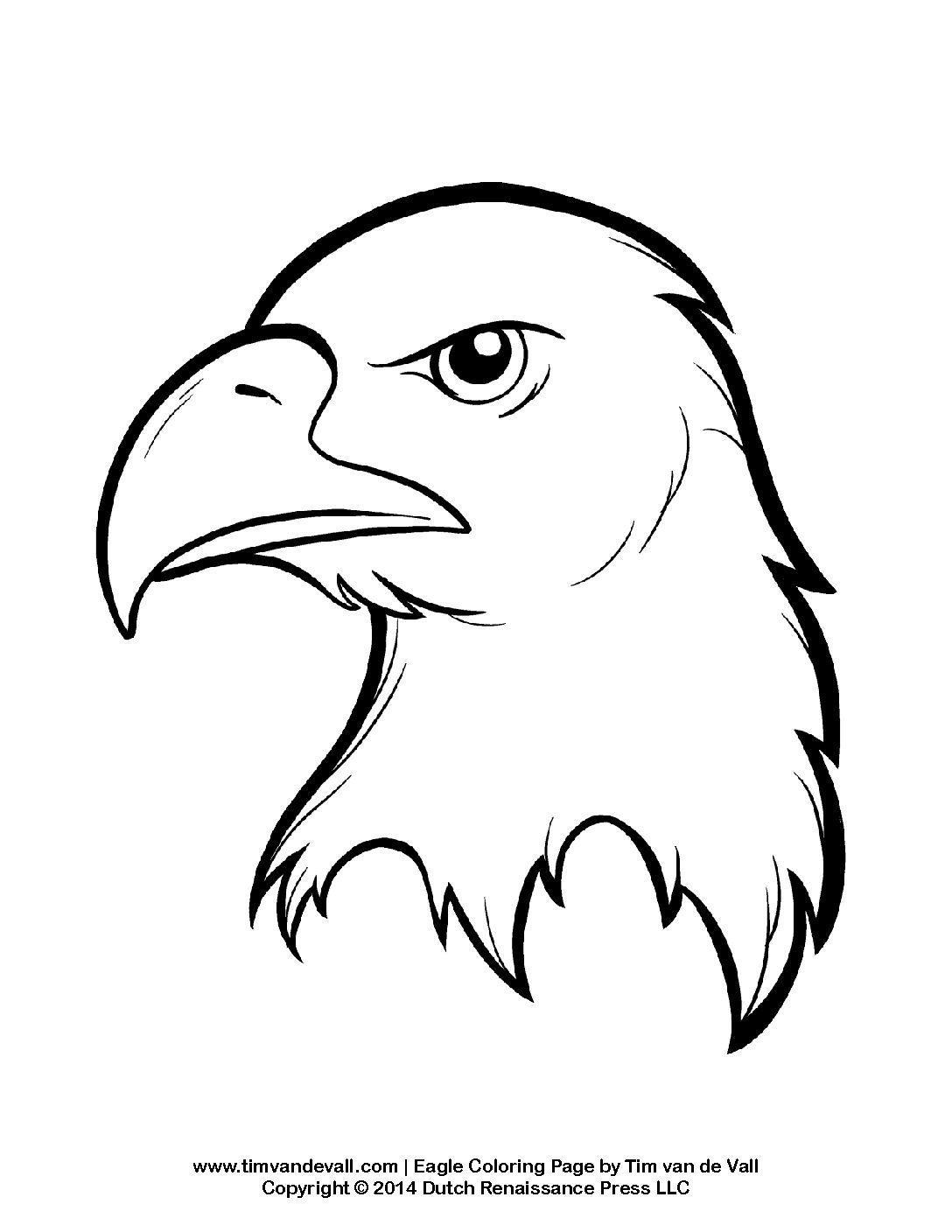 coloring pages of bald eagles bald eagle coloring pages download and print for free bald pages eagles of coloring