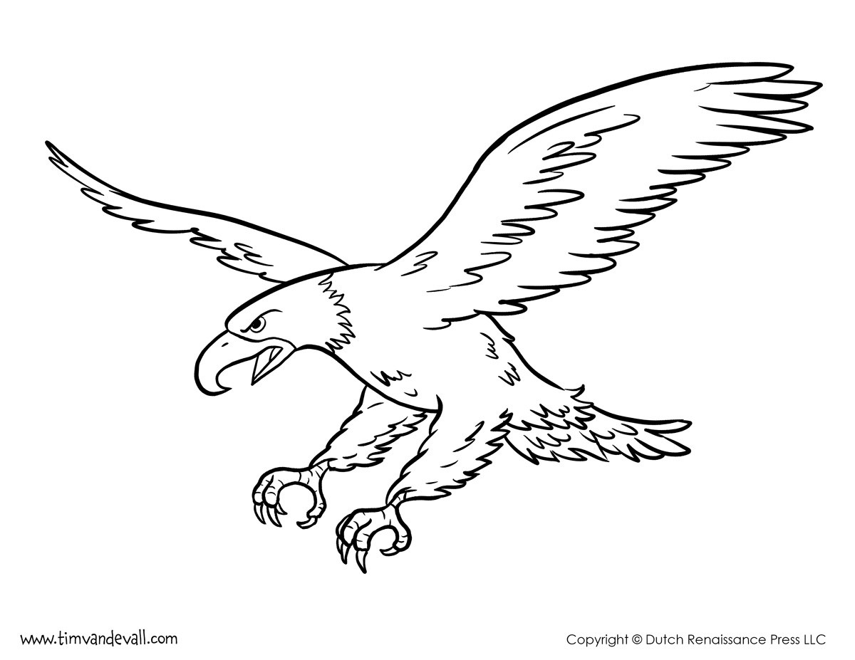 coloring pages of bald eagles bald eagle flying around coloring page netart eagles bald coloring of pages