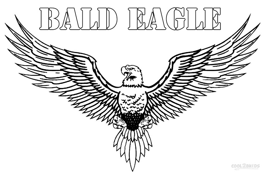 coloring pages of bald eagles bald eagle flying finding her mate coloring page netart coloring bald of eagles pages