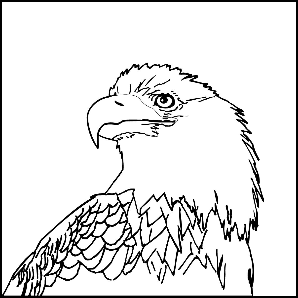 coloring pages of bald eagles bald eagle in flight coloring page free printable coloring bald eagles of pages