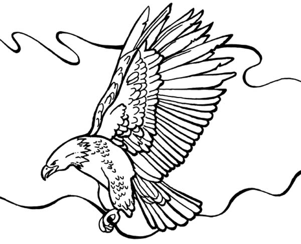 coloring pages of bald eagles flying bald eagle coloring page animals town pages eagles bald of coloring
