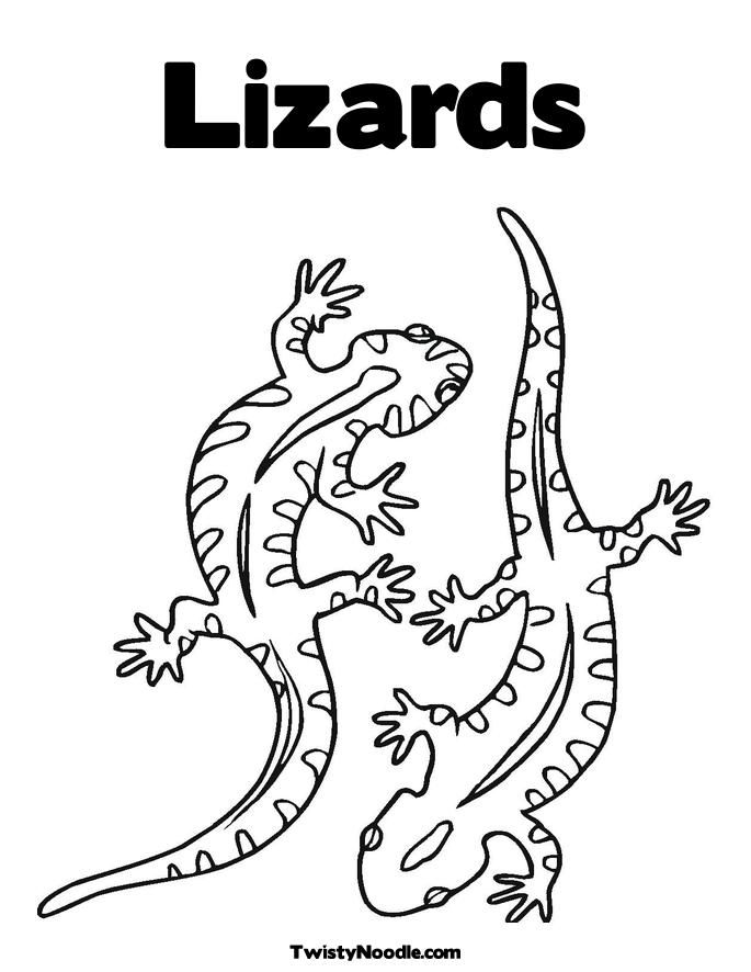 coloring pages of lizards free lizard coloring pages lizards coloring of pages