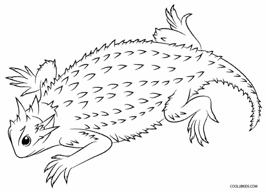 coloring pages of lizards printable lizard coloring pages for kids cool2bkids of pages coloring lizards