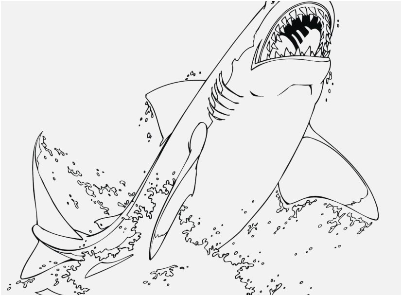 coloring pages sharks printable free shark coloring pages pages sharks printable coloring