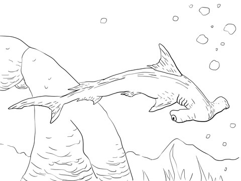 coloring pages sharks printable shark coloring pages toothy terrors pages coloring printable sharks