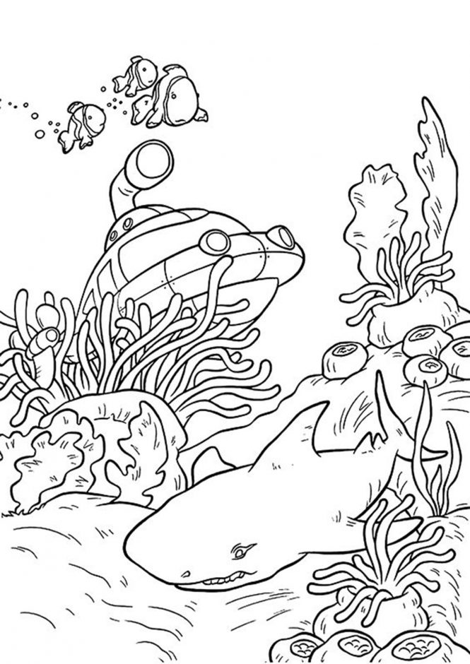 coloring pages sharks printable shark sheets for kids activity shelter pages sharks coloring printable