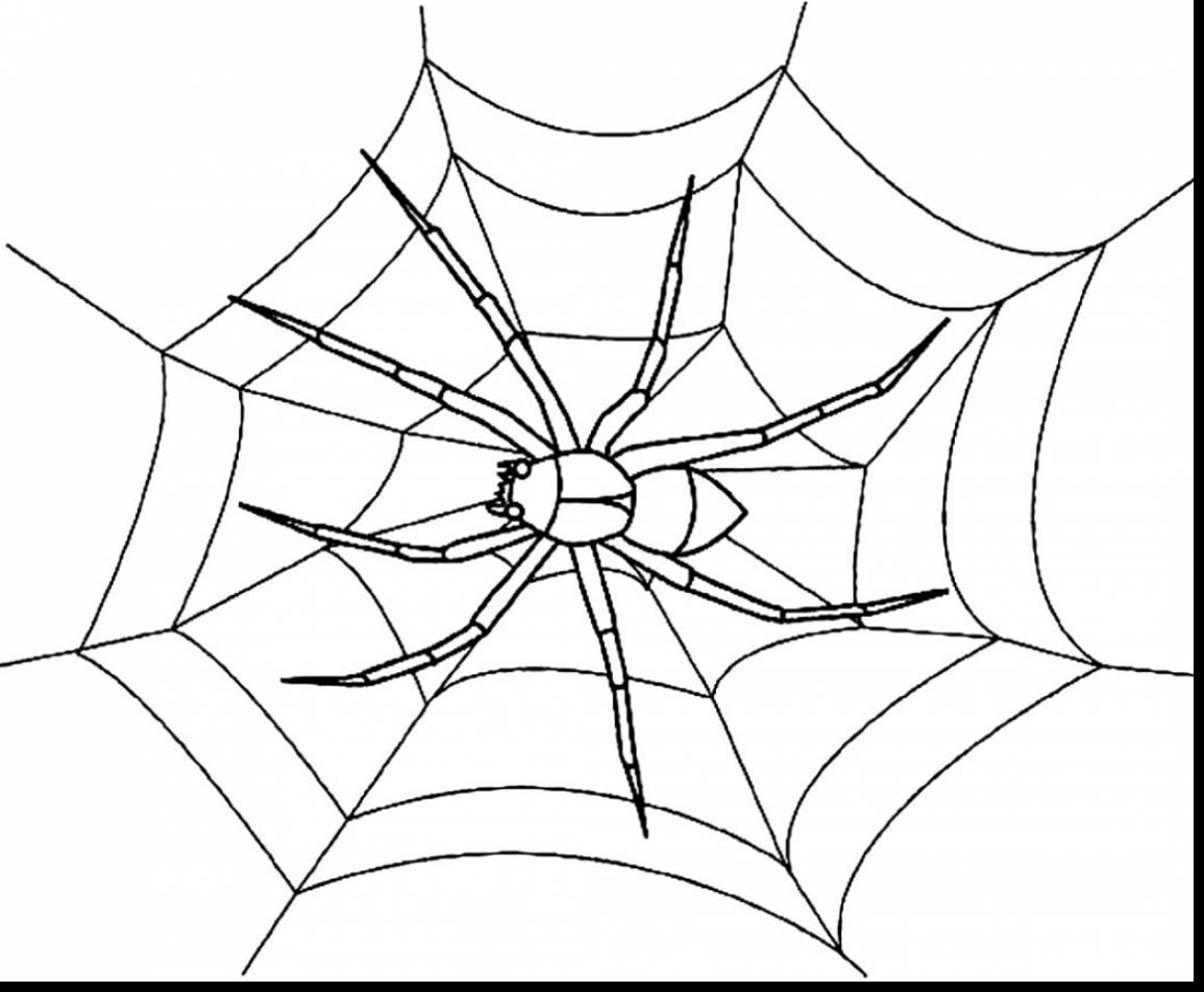 coloring pages websites spider watch for insect on spider web coloring page pages coloring websites