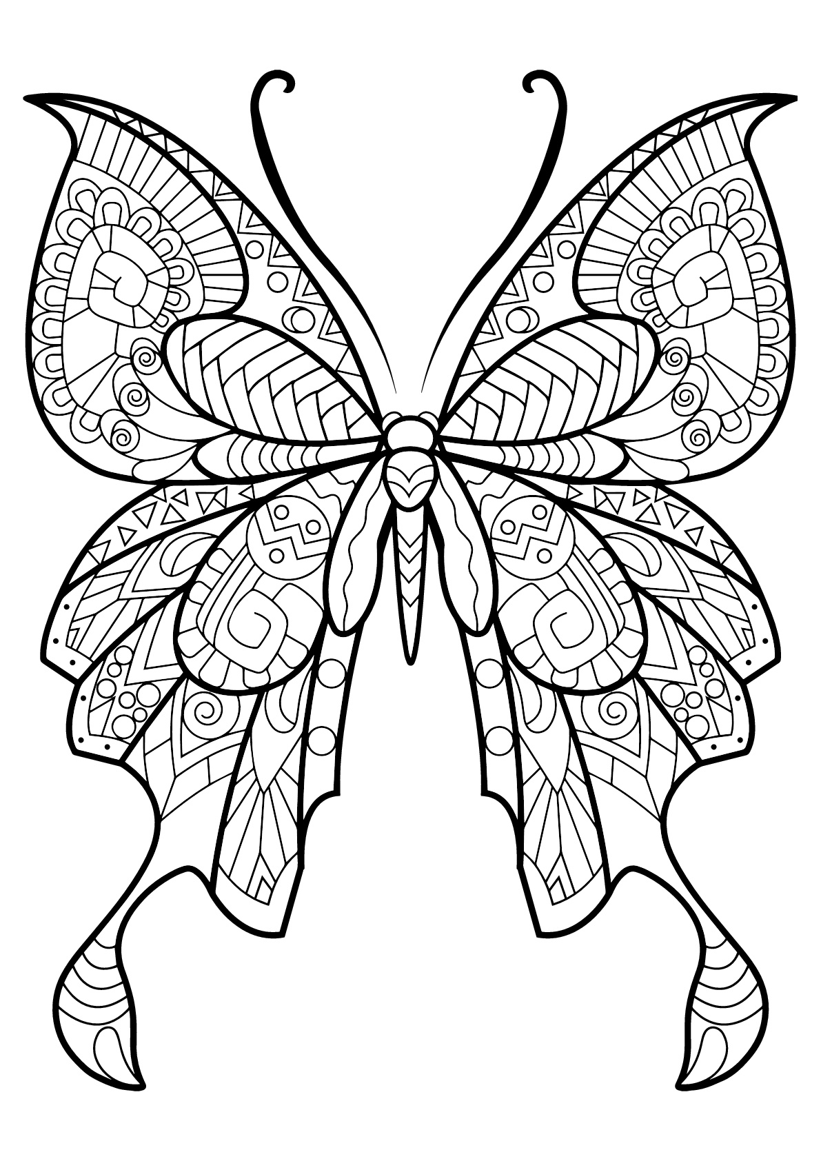 coloring pages with butterflies butterfly beautiful patterns 8 butterflies insects pages with coloring butterflies