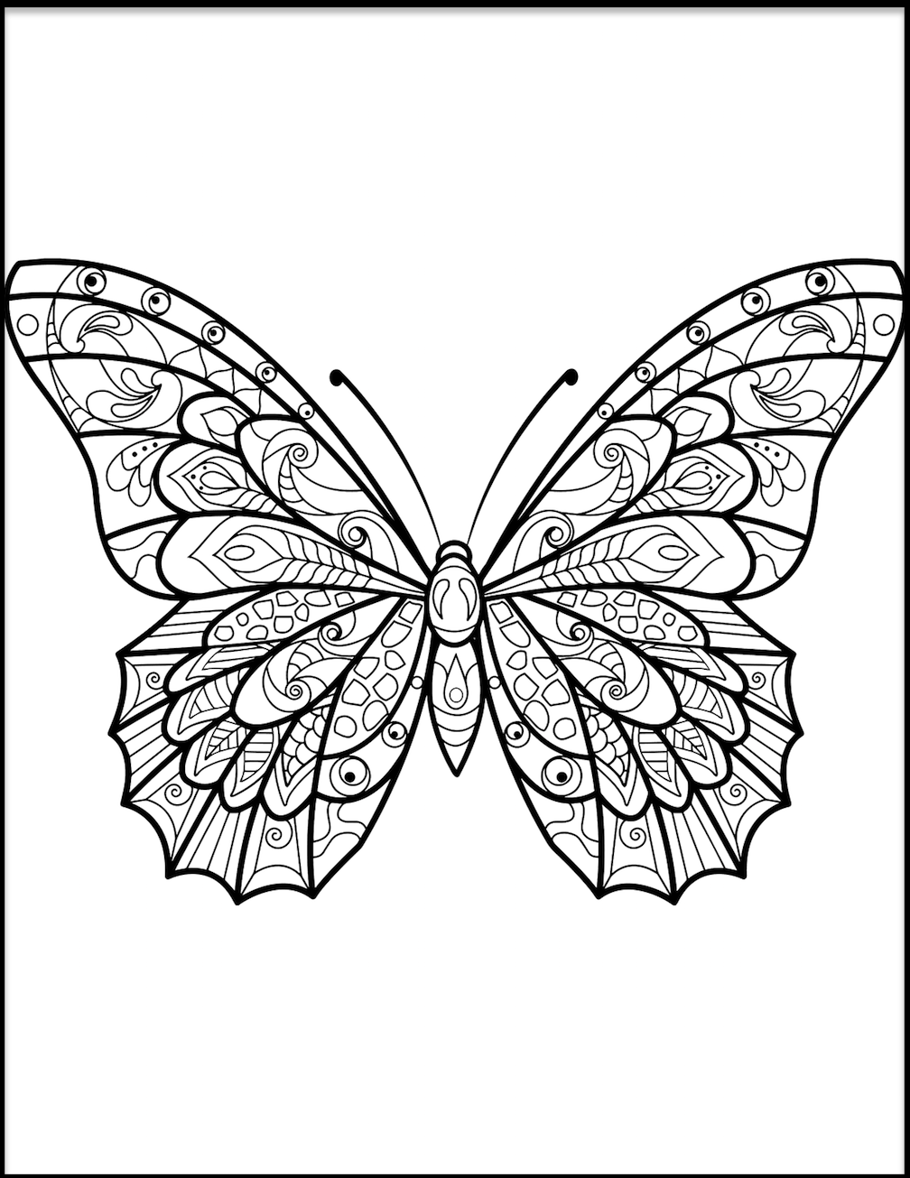 coloring pages with butterflies butterfly coloring pages and other free printable coloring pages with butterflies coloring