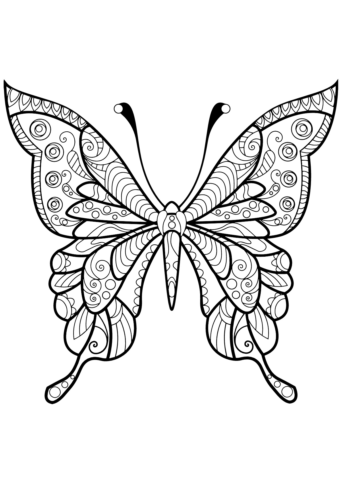 coloring pages with butterflies butterfly coloring pages for adults best coloring pages with pages coloring butterflies